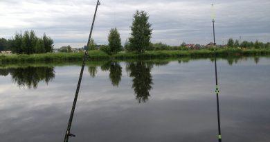 Рыбалка. Серия 5.